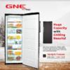 GNE Upright Freezer Model : GNF - 300 DC